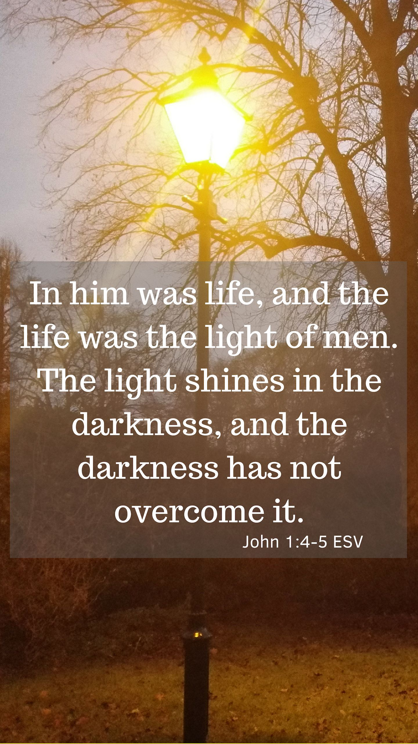 'In him was life, and the life was the light of men. The light shines in the darkness, and the darkness has not overcome it.'  John 1:4-5 ESV
